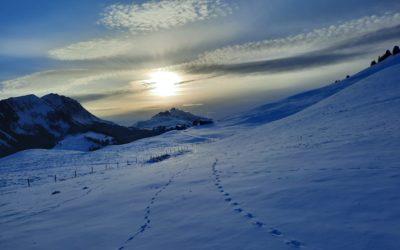 Leysin, les Alpes côté soleil, le parc Gruyère Pays-d'En-Haut