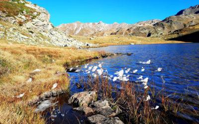 L'automne dans la Clarée, des paysages époustouflants !